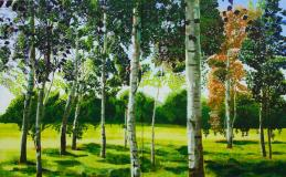 Wandsworth Common Summer Birches